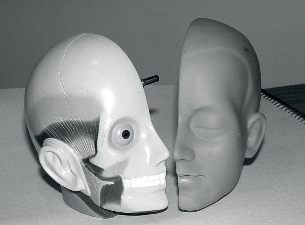 plastic-model-head-3-1425187